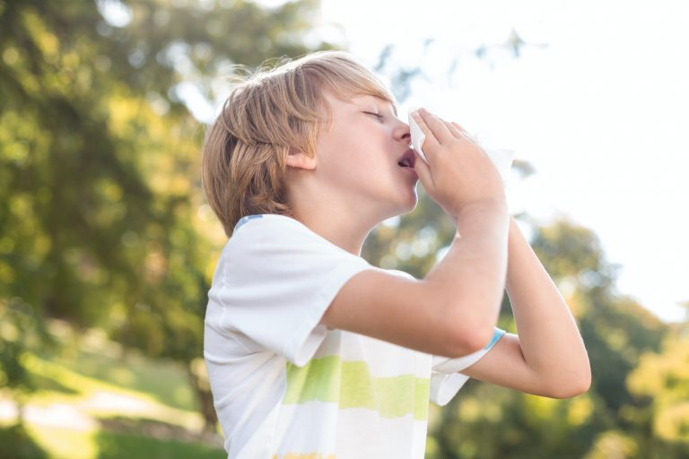 what is hay fever symptoms and treatment